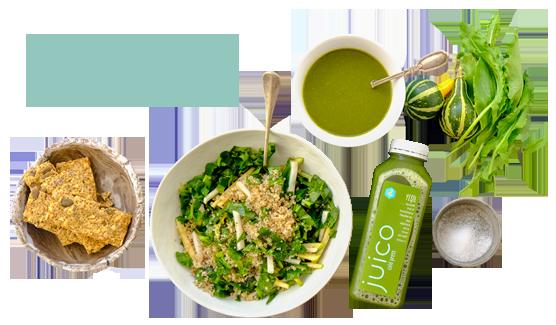 Juico Intermittent - Haftalık Diyet Programı